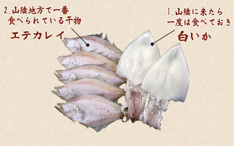 山陰沖 日本海産 名人の干物特選2種7尾の内容