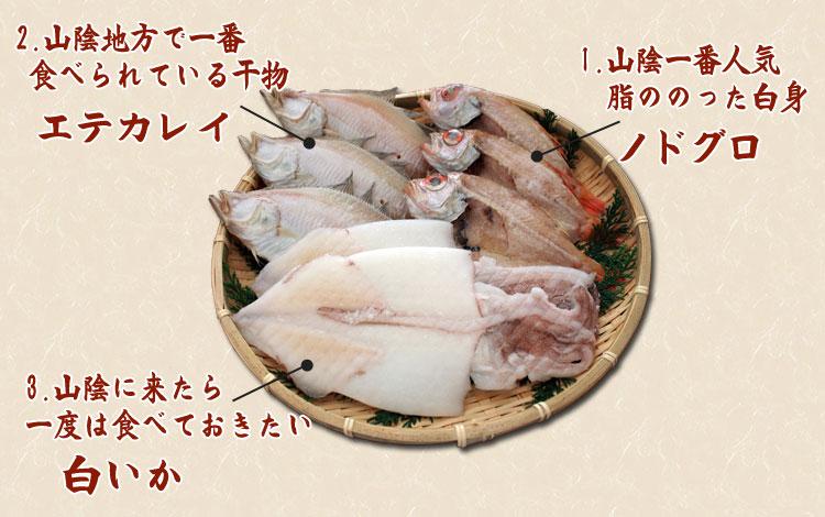 山陰沖 日本海産 名人の干物特選3種8尾の内容