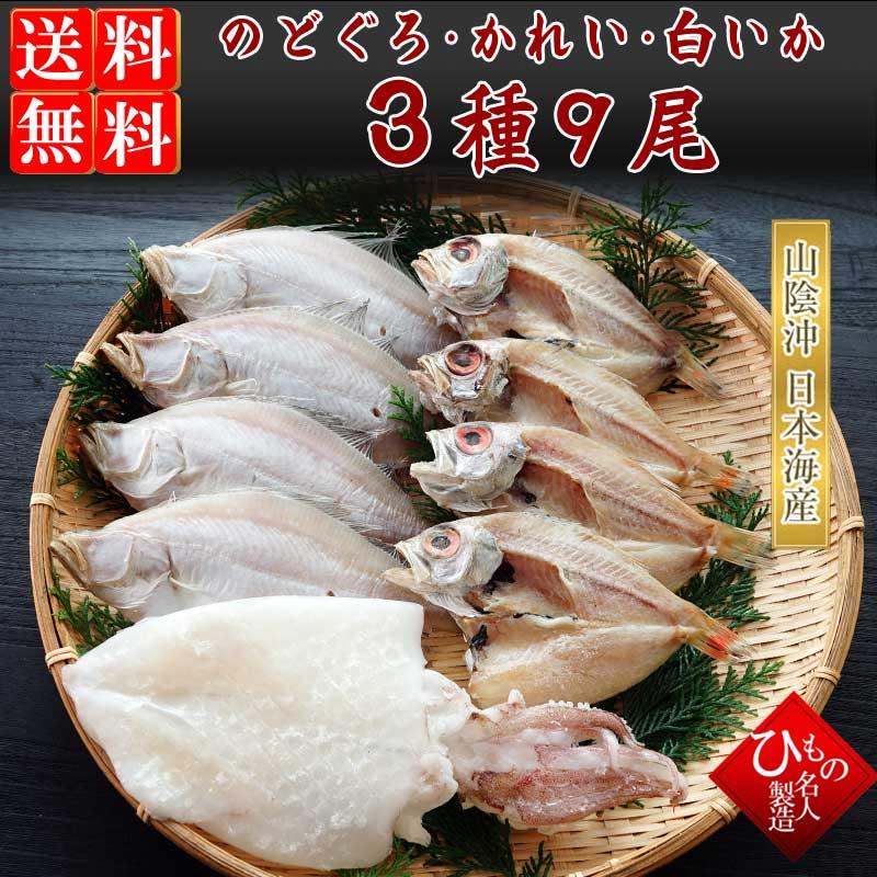 山陰沖 日本海産 名人の干物特選3種9尾