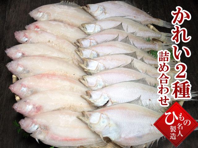 粉雪のような繊細な食感上品で芯のある甘み。山陰沖日本海産 笹かれい