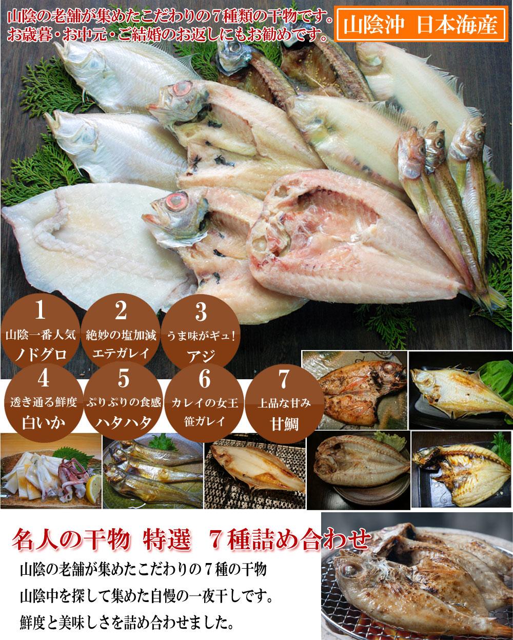 山陰沖 日本海産 名人の干物特選7種類D