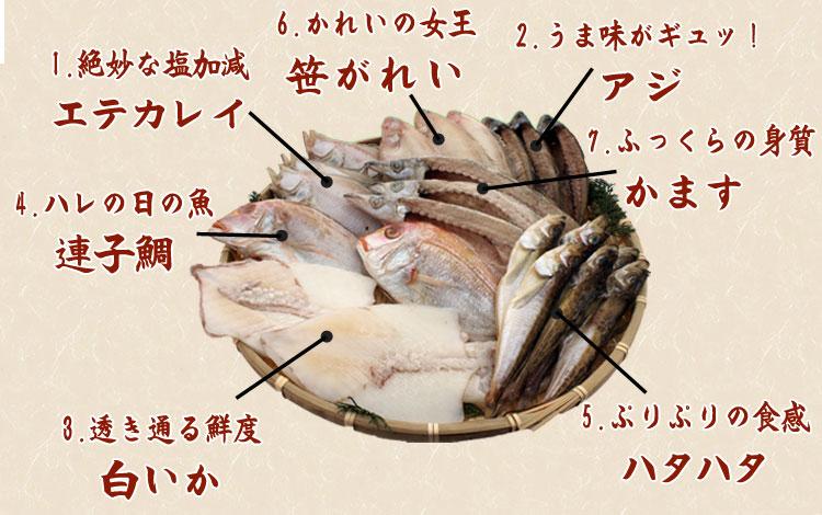 山陰沖 日本海産 名人の干物特選7種類(連子鯛入り)-1