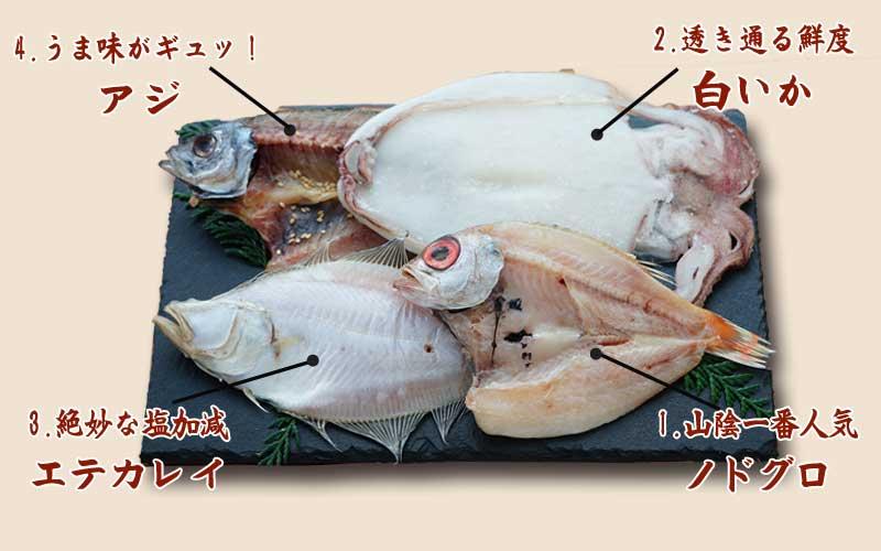 山陰沖 日本海産 名人の干物4種詰合-C3