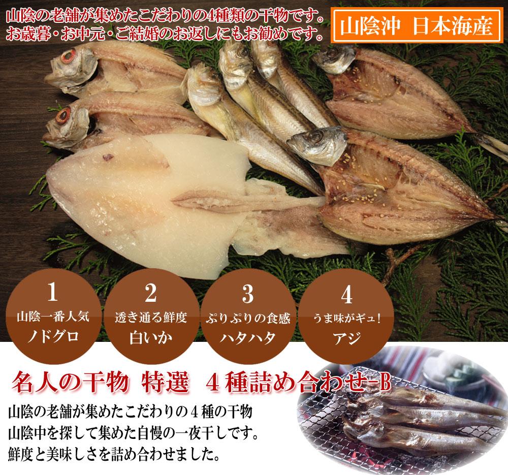 山陰沖 日本海産 名人の干物特選4種類-B
