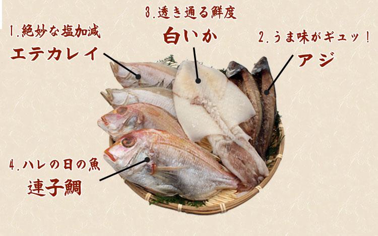 山陰沖 日本海産 名人の干物特選4種類(連子鯛入り)