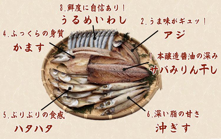 山陰沖 日本海産 名人の干物 特選4種類「幸」-26尾