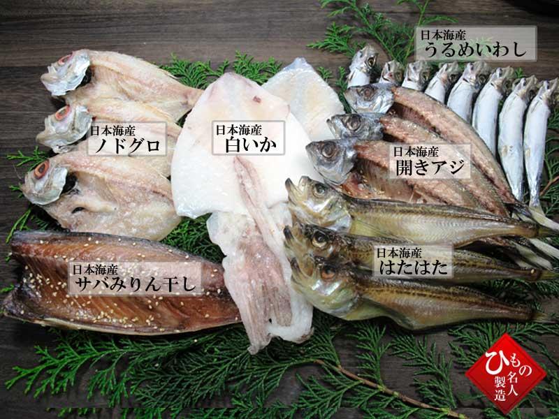 山陰沖 日本海産 名人の干物特選6種類B
