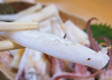 白イカ 身
