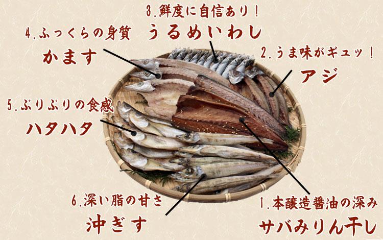 山陰沖 日本海産 名人の干物「幸」-35尾