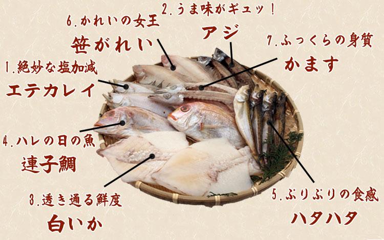 山陰沖 日本海産 名人の干物特選7種類(連子鯛入り)-2