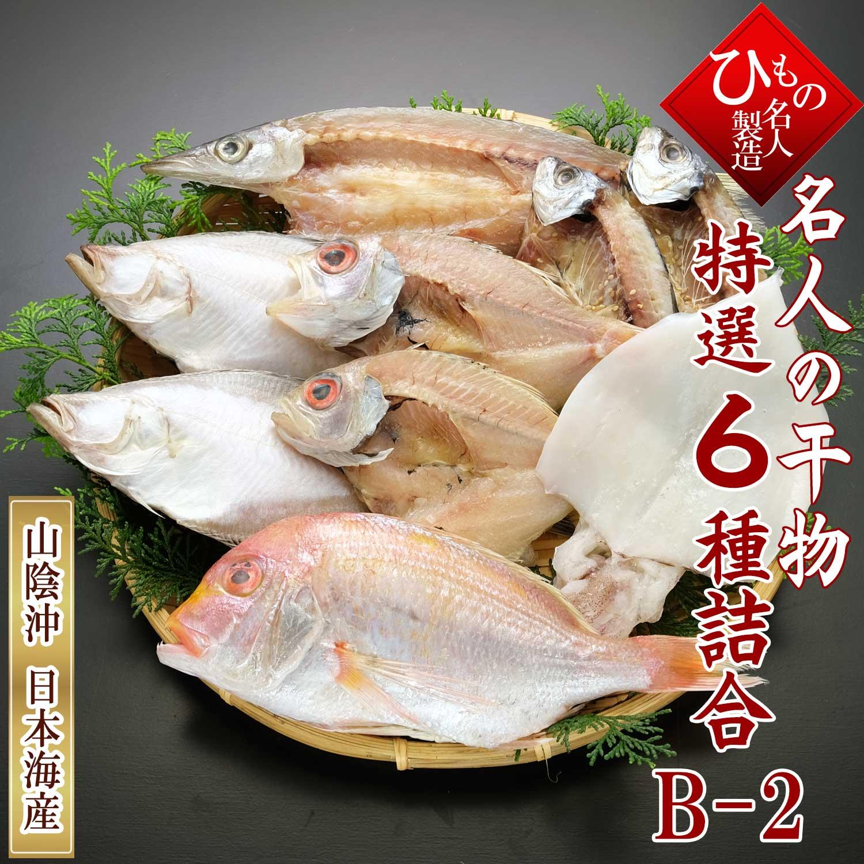山陰沖 日本海産 名人の干物 祝-10尾