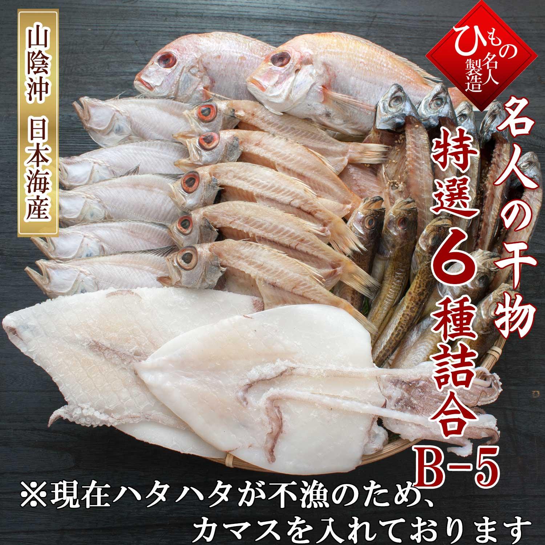山陰沖 日本海産 名人の干物 6種 B5