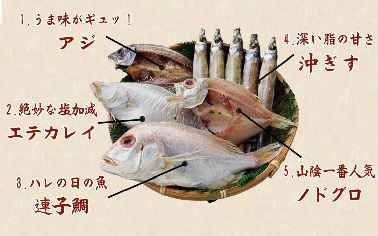 山陰沖 日本海産 名人の干物 5種-M