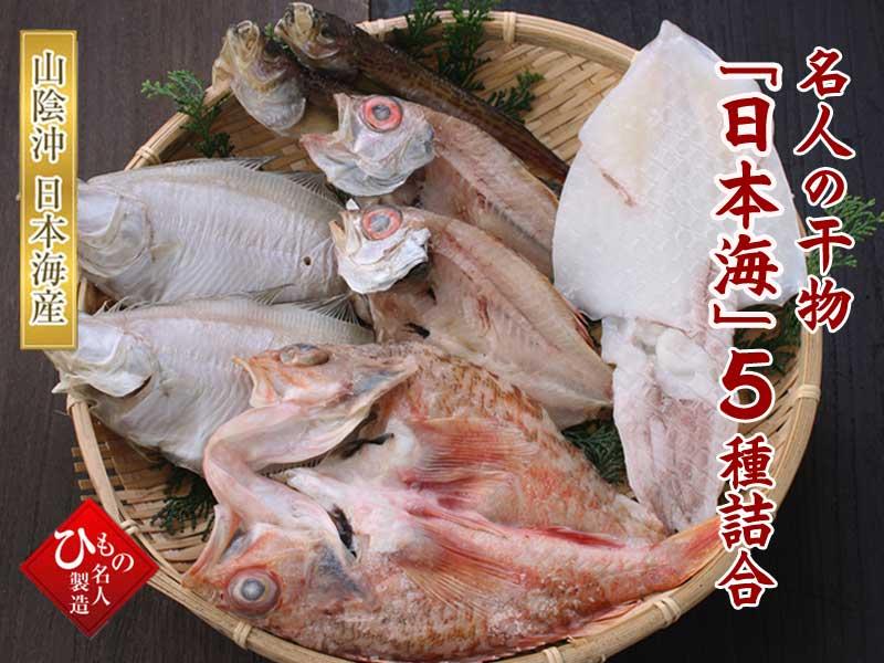 日本海 5種類