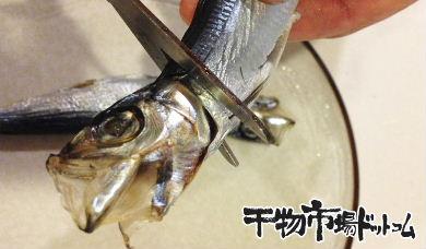 もう苦くない!潤目鰯(うるめいわし)の焼き方_背中からハサミを入れます。