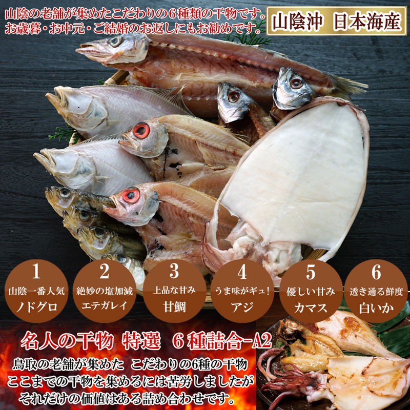 山陰沖 日本海産 名人の干物6種詰合-A2