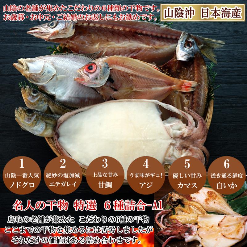 山陰沖 日本海産 名人の干物6種詰合-A1