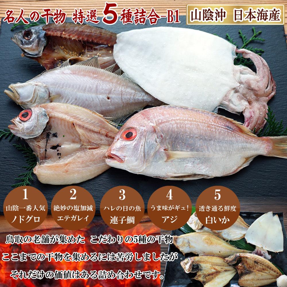 山陰沖 日本海産 名人の干物5種詰合-B1