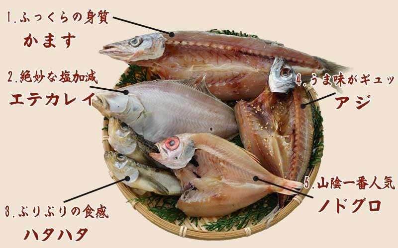 山陰沖 日本海産 名人の干物5種詰合-A1
