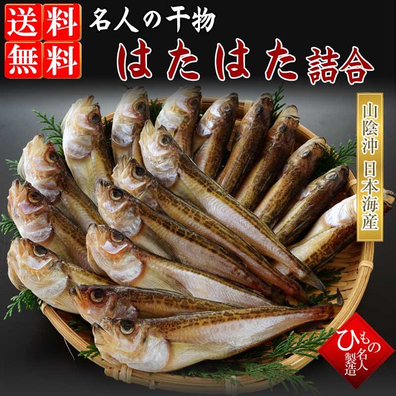 口に広がるうま味。そして、ぷりぷりの食感。山陰沖日本海産 白ハタ