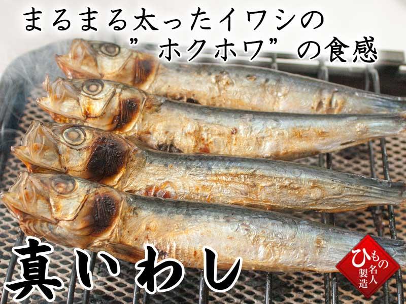 まるまる太ったイワシのホクホクの食感 山陰沖日本海産マイワシ一夜干し