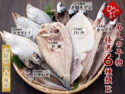 名人の干物6種(白いか・甘鯛入り)詰合-E