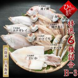名人の干物6種-B