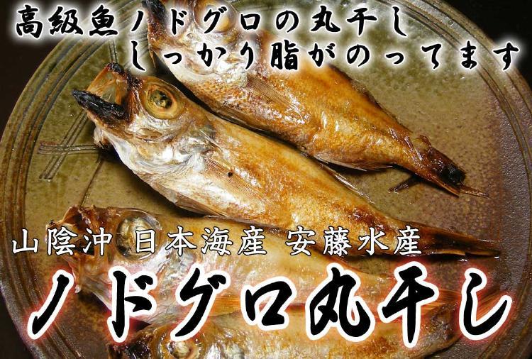 小ぶりでもしっかり脂がのってます。山陰沖日本海産 のどぐろ丸干し