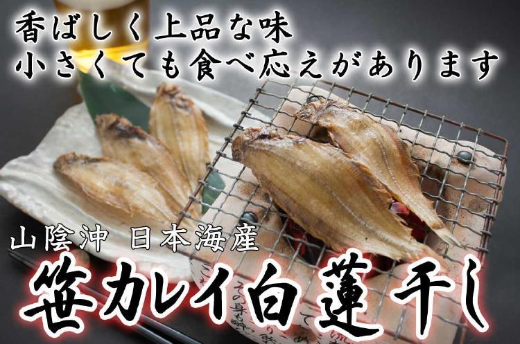 香ばしく上品な味。小さくても食べ応えがあります。山陰沖日本海産笹カレイ白蓮干し