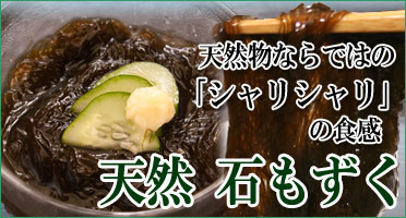 鳥取県産石もずく