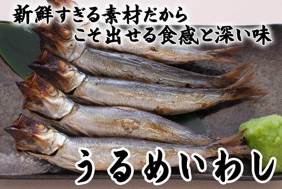 新鮮すぎる素材だから出せる食感と深い味 山陰沖日本海産うるめいわし一夜干し