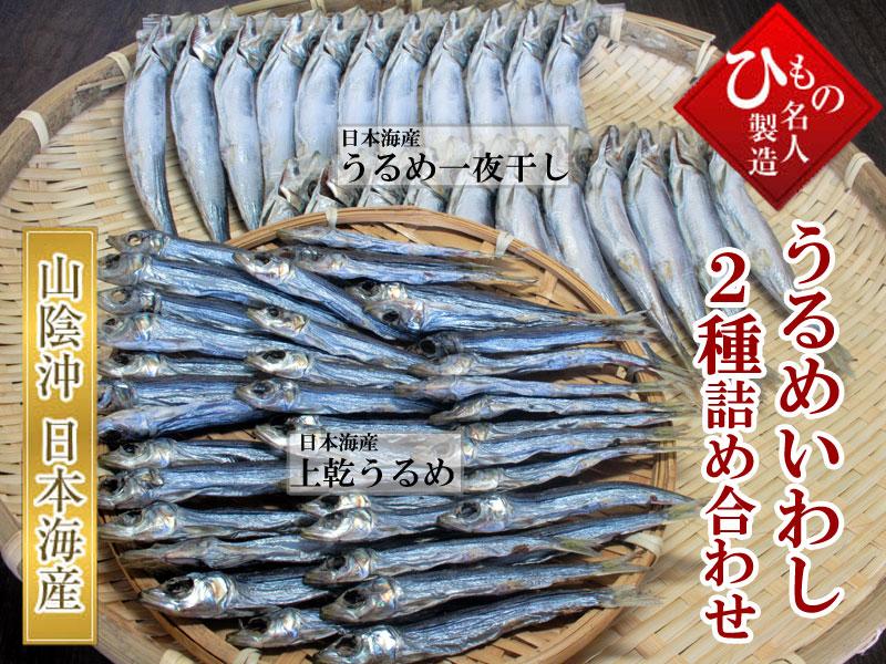山陰沖 日本海産、うるめいわし2種詰め合わせ