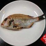 お作法通りに魚を食べる-連子鯛編